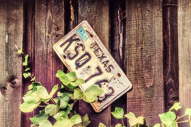 license-plate-1524129_640