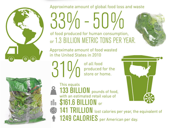 How Can We Prevent Food Waste