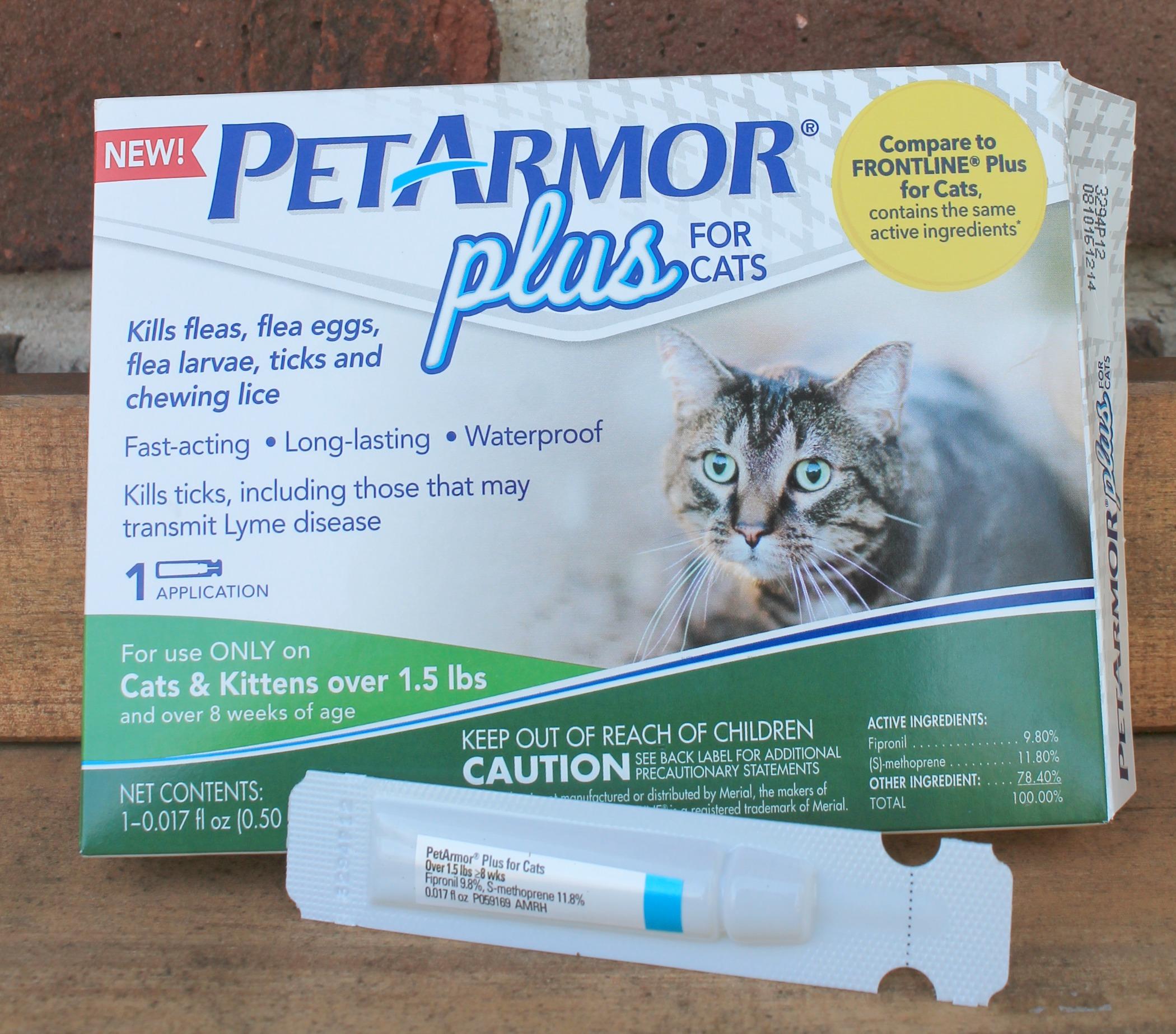 Petarmor Cats 2018 Funny Cats