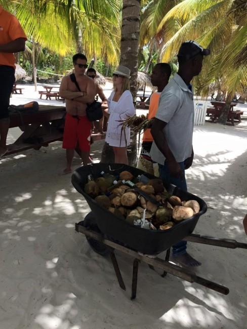 coconuts isla saona
