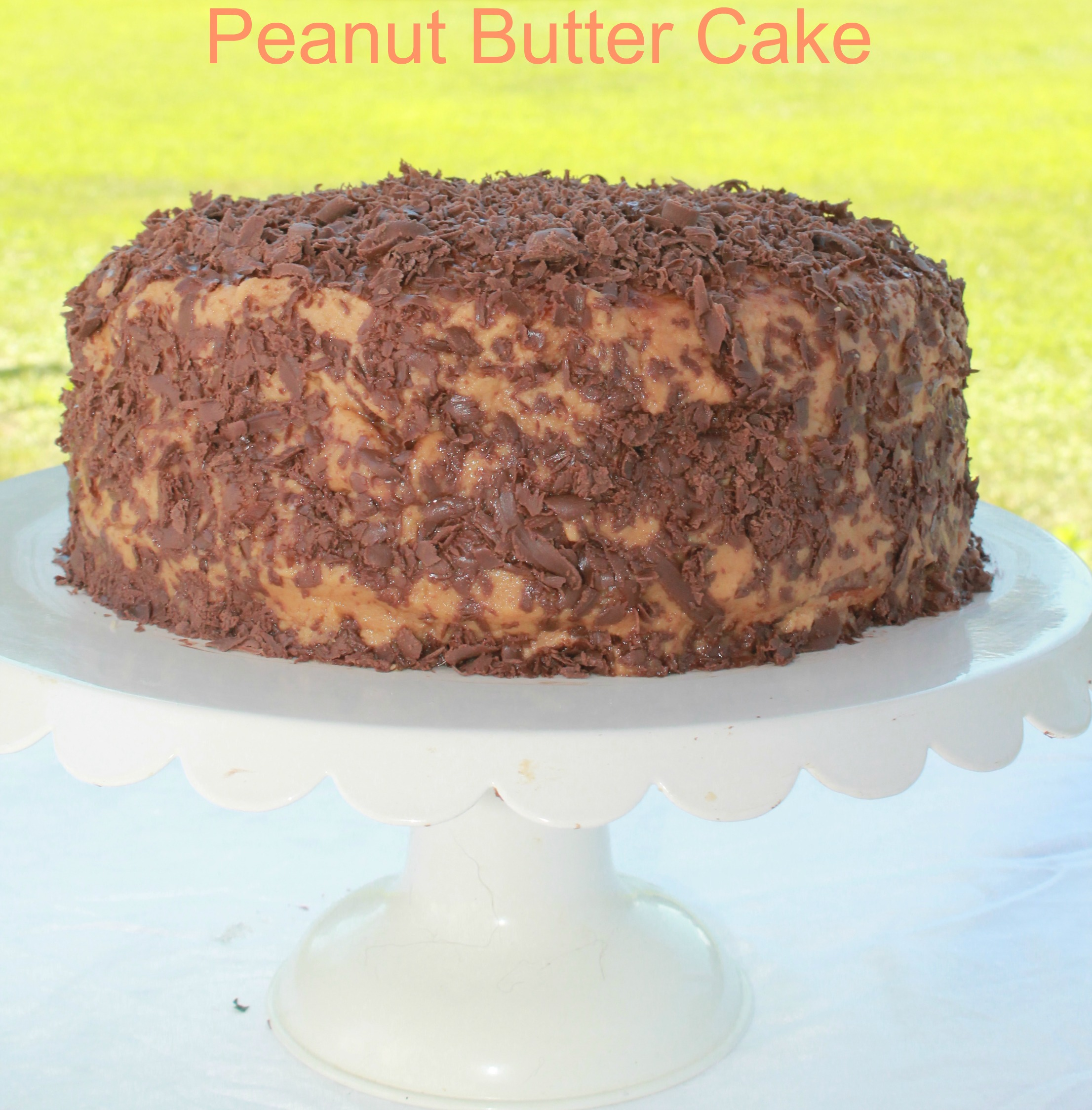 Peanut butter cup cake recipe simply southern mom for Desserts you can make with peanut butter