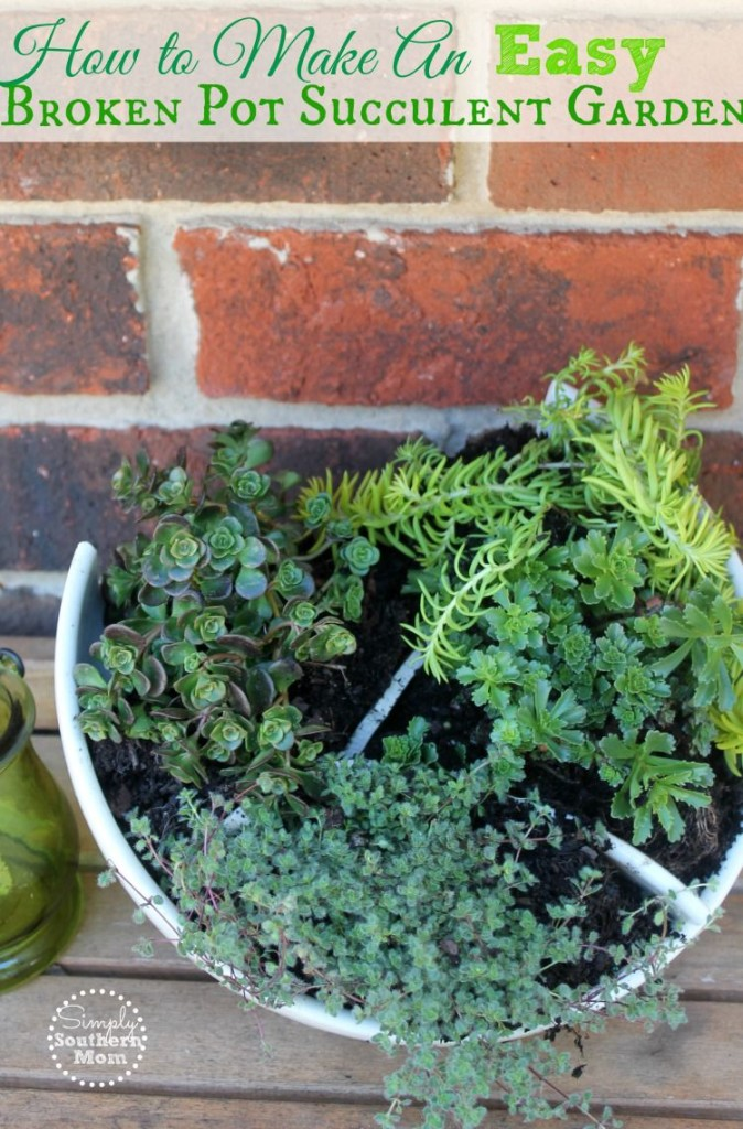 How to make an easy broken pot succulent container garden simply how to make an easy broken pot succulent workwithnaturefo