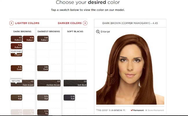 Hair color consultation questionnaire om hair for E salon hair color reviews