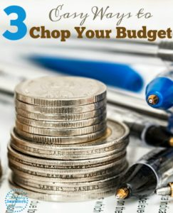 3 Painless Ways to Chop Your Budget
