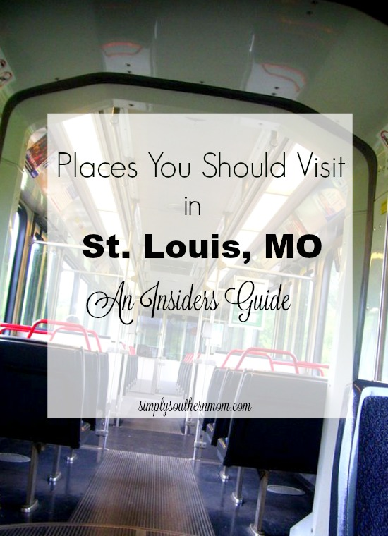 Places You Should Visit in St. Louis, MO